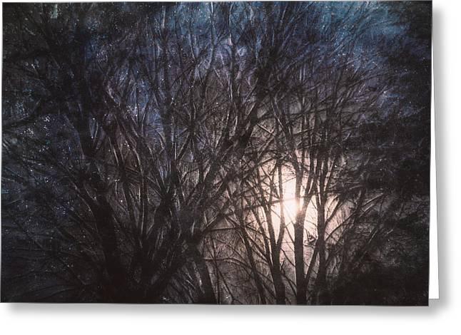 Full Moon Rising Greeting Card by Scott Norris