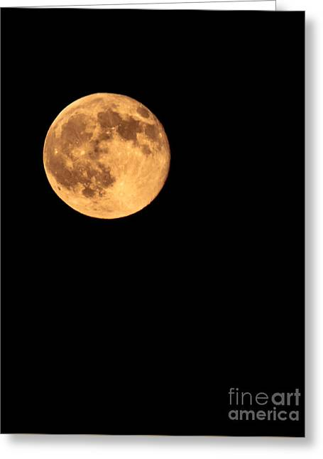 Lunar Surface Greeting Cards - Full Moon Greeting Card by Robert Bales