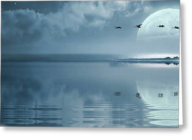 Flying Swan Greeting Cards - Fullmoon over the ocean Greeting Card by Jaroslaw Grudzinski