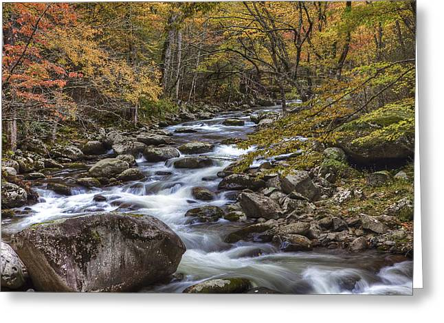 Fun With The Colors Greeting Card by Jon Glaser