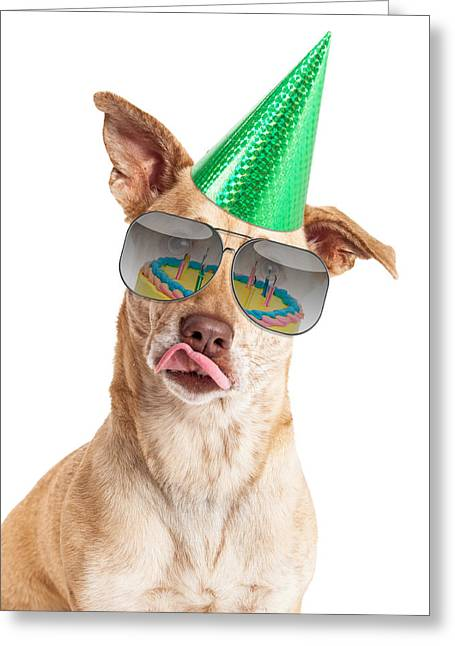 Mutt Greeting Cards - Funny Dog Birthday Cake Reflection Greeting Card by Susan  Schmitz
