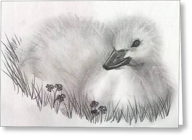 Fuzzy Greeting Card by Patricia Merewether