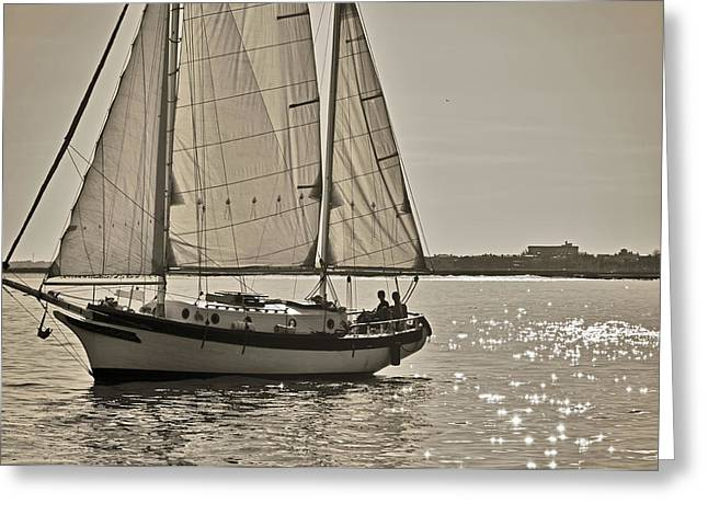 Cutter Greeting Cards - Gaff Rigged Ketch Cutter Sailing the Charleston Harbor Greeting Card by Dustin K Ryan