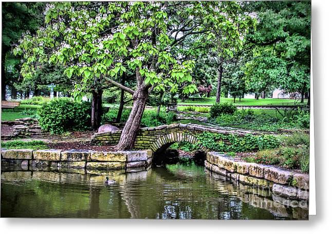 Reflecting Water Greeting Cards - Gage Park Greeting Card by Elizabeth Winter