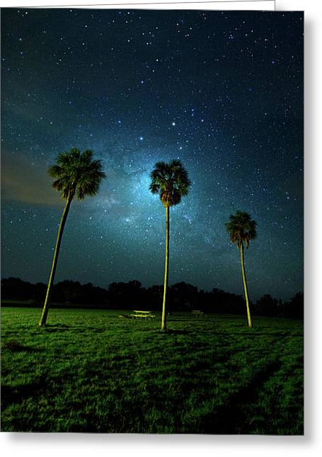 Galaxy Palms Greeting Card by Mark Andrew Thomas