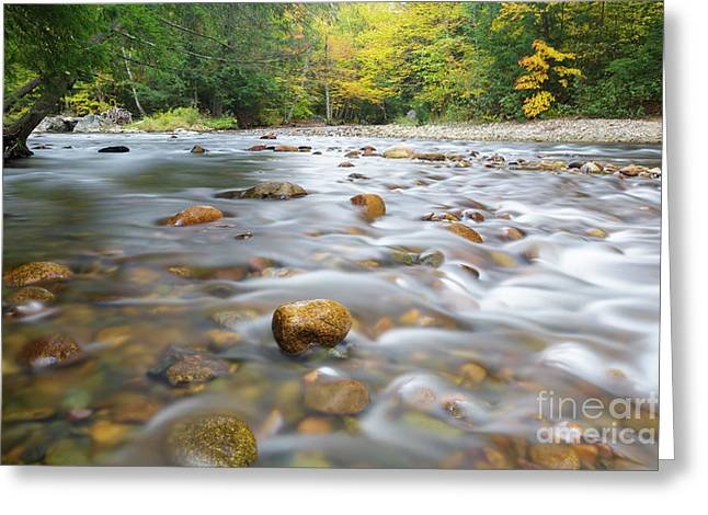 Gale River - Franconia New Hampshire  Greeting Card by Erin Paul Donovan