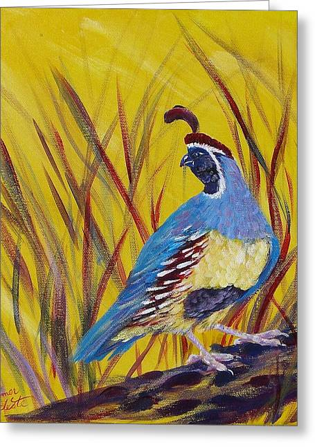 Summer Celeste Greeting Cards - Gamble Quail Greeting Card by Summer Celeste