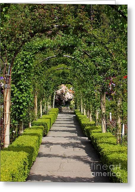 Butchart Gardens Greeting Cards - Garden Arbor Path Greeting Card by Carol Groenen