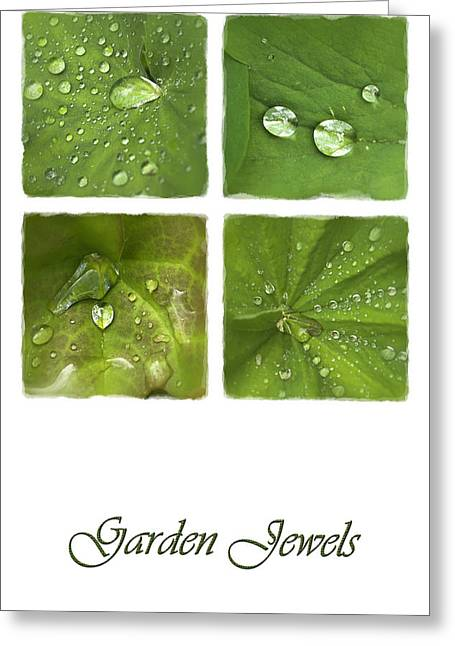 Mchugh Greeting Cards - Garden Jewels Greeting Card by Malc McHugh