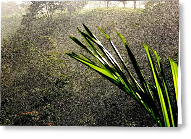 Garden of Eden Rain Greeting Card by KAREN WILES