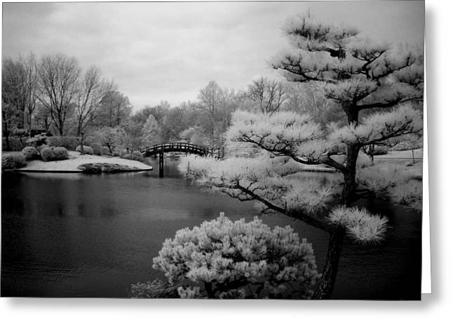 Fir Trees Greeting Cards - Garden of Pure Clear Harmony Greeting Card by Jane Linders