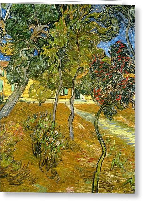 Mental Greeting Cards - Garden of Saint Pauls Hospital Greeting Card by Vincent van Gogh