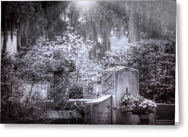 Beauty Mark Greeting Cards - Garden of Tranquility Greeting Card by Mark Andrew Thomas