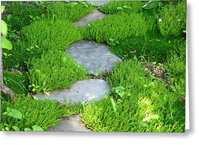 Garden Path Greeting Card by Idaho Scenic Images Linda Lantzy
