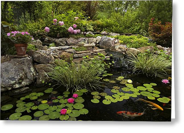 Garden Pond - D001133 Greeting Card by Daniel Dempster