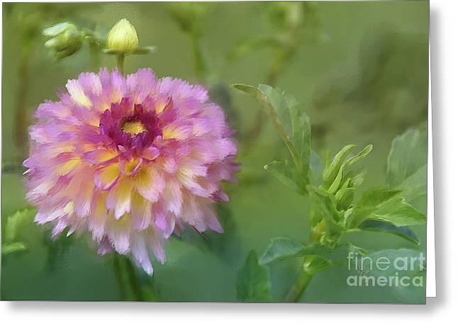 Garden Variety Dahlia Greeting Card by Lois Bryan