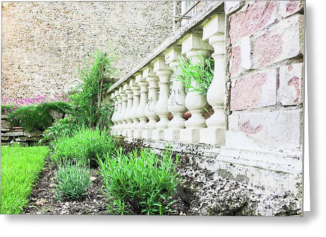 Garden Wall Greeting Card by Tom Gowanlock