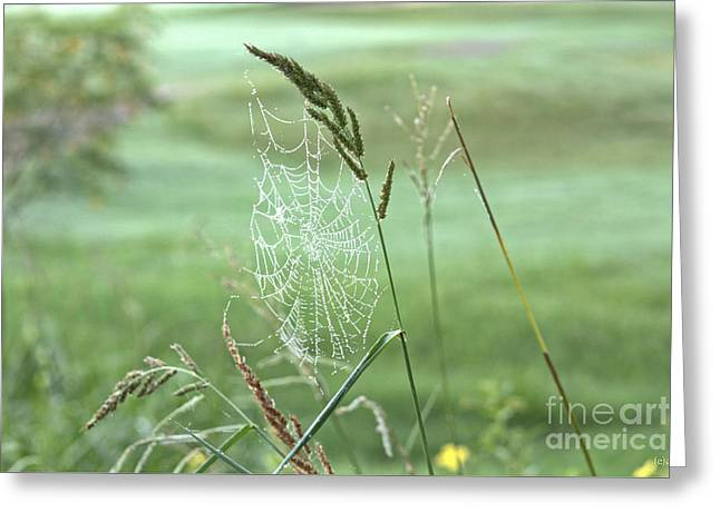 Original Photographs Greeting Cards - Gardeners of Diamonds and Lace Greeting Card by Ella Kaye Dickey