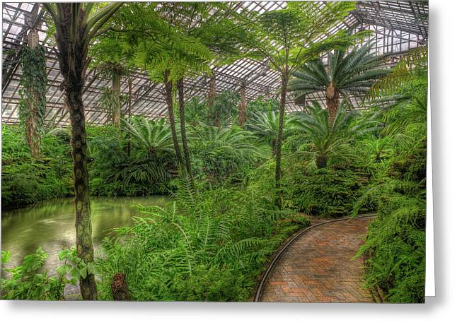 Garfield Greeting Cards - Garfield Park Conservatory Pond And Path Chicago Greeting Card by Steve Gadomski