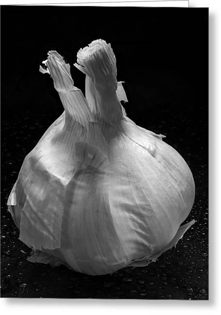 Garlic Greeting Cards - Garlic Bulb B W Greeting Card by Steve Gadomski