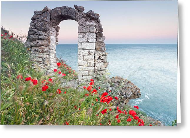 Fortress Greeting Cards - Gate in the Poppies Greeting Card by Evgeni Dinev