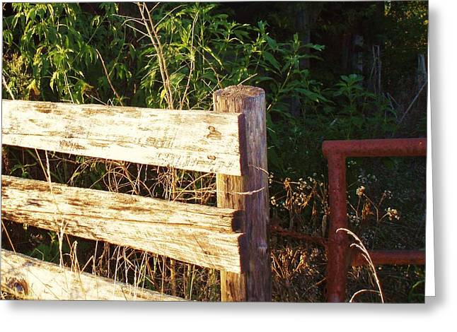 Old Fence Posts Digital Greeting Cards - Gate Post Greeting Card by Robert Habermehl