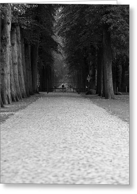 Deutschland Greeting Cards - Gated Path Greeting Card by Edward Myers