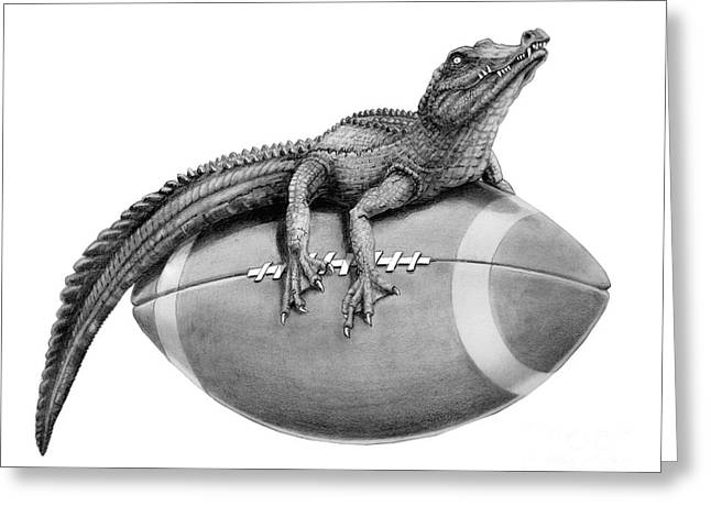 Graphite Greeting Cards - Gator Football Greeting Card by Murphy Elliott