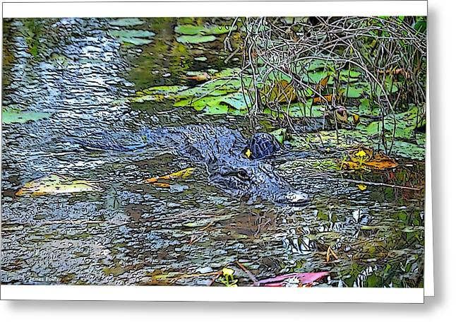 Pond In Park Greeting Cards - Gator on the Move Greeting Card by James Fowler