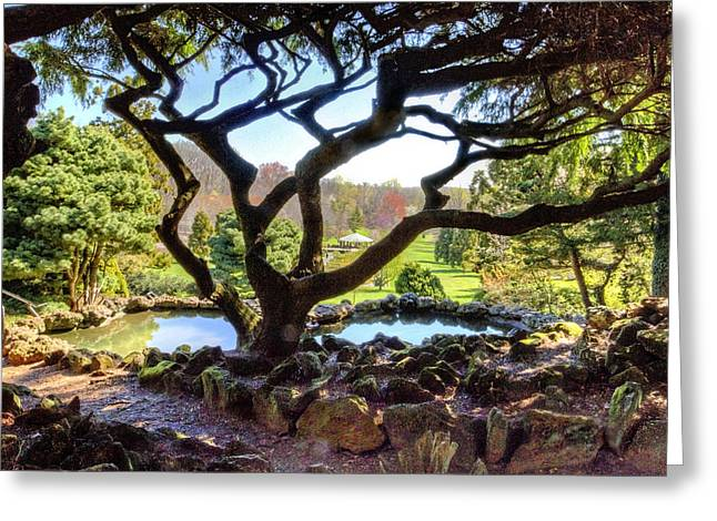 Gazebo Wall Art Greeting Cards - gazebo through the trees at Deep Cut Gardens Greeting Card by Geraldine Scull