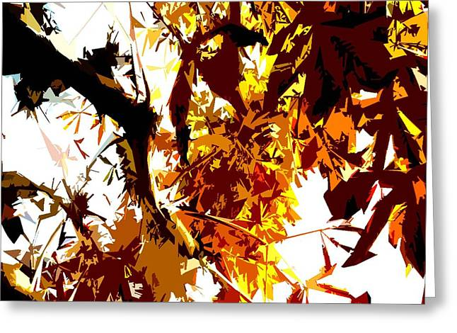 Gazing Into The Autumn Trees Greeting Card by Patrick J Murphy