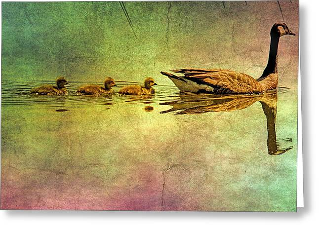 Landscape Posters Greeting Cards - Geese and babies textured Greeting Card by Geraldine Scull