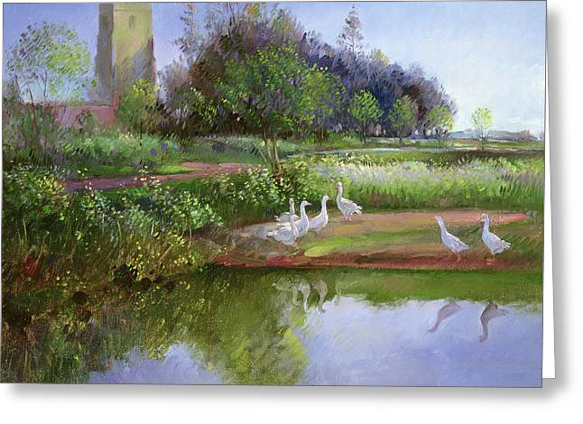 Geese At Sundown Greeting Card by Timothy Easton