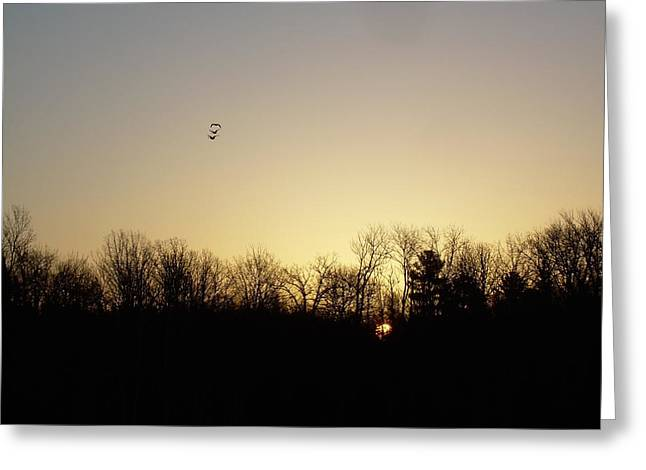 Geese Pyrography Greeting Cards - Geese at Sunrise Greeting Card by Kent Lorentzen