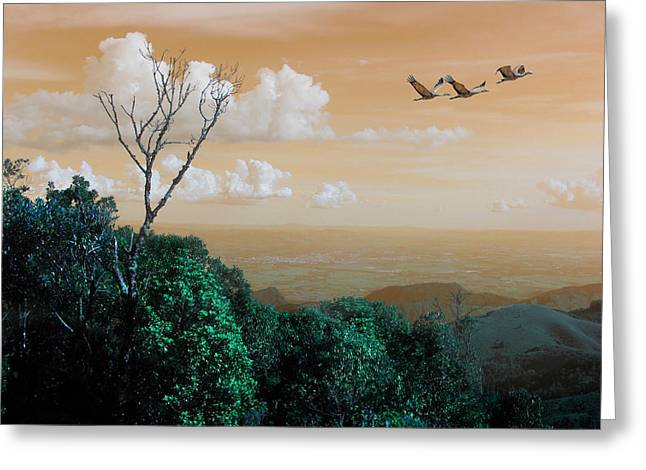 Beautiful Scenery Greeting Cards - Geese Flying Over The Mountains Of Brazil Greeting Card by Iva Castro