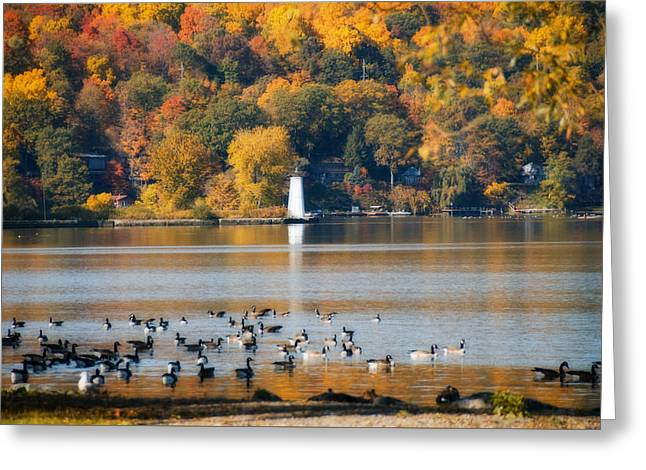 Recently Sold -  - Ithaca Greeting Cards - Geese on the Lake Greeting Card by Joseph Scaglione