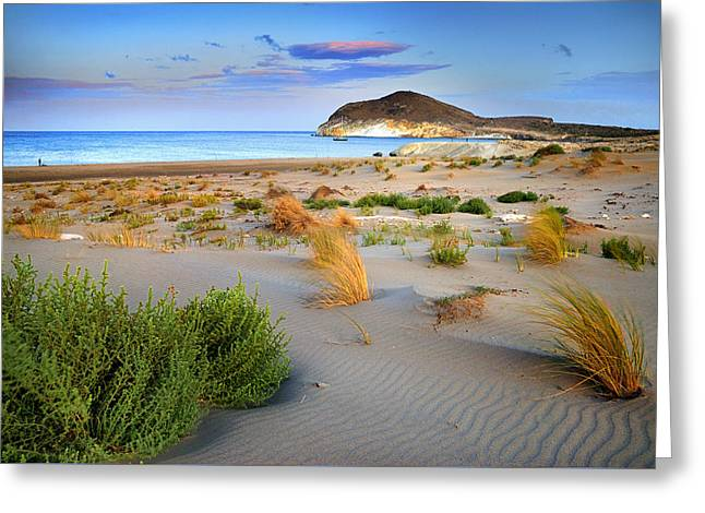 Genoveses Beach Greeting Card by Guido Montanes Castillo