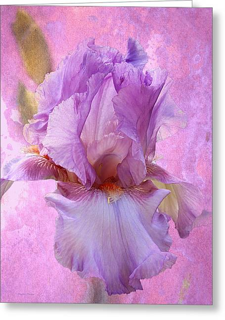 Floral Digital Art Digital Art Greeting Cards - Gentle Lavender Iris Greeting Card by Phyllis Denton