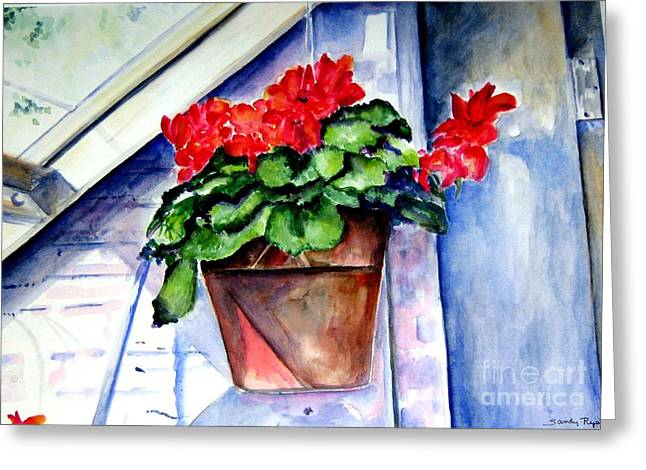 Red Geraniums Greeting Cards - Geraniums Greeting Card by Sandy Ryan
