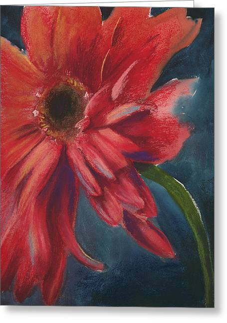 Gerber Daisy Pastels Greeting Cards - Gerber Daisy 1 Greeting Card by Brandi York