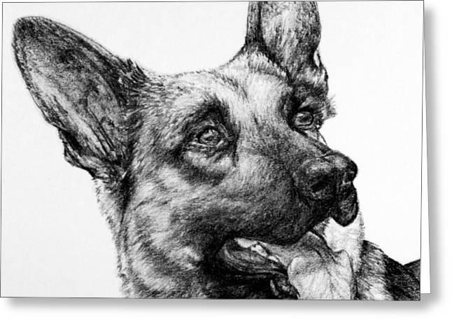 Kaelin Drawings Greeting Cards - German Shepherd Greeting Card by Roy Kaelin