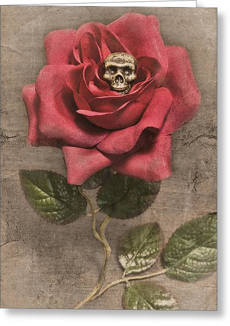 Germination Greeting Card by Jeff  Gettis