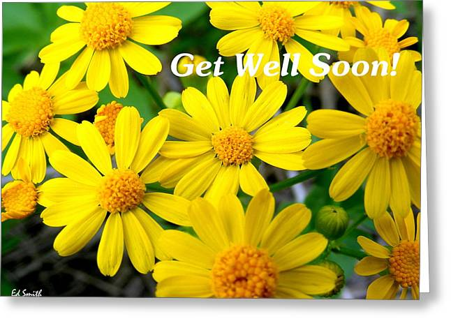 Get Well Flowers Greeting Cards - Get Well Soon Greeting Card by Ed Smith