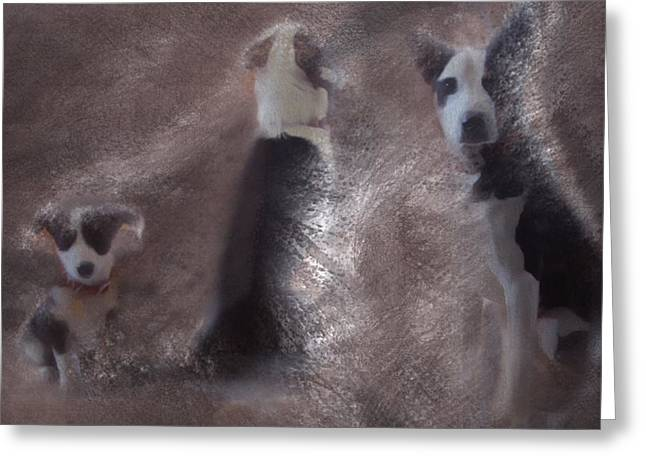 Puppy Digital Art Greeting Cards - Getting to know you Greeting Card by Suzy Norris
