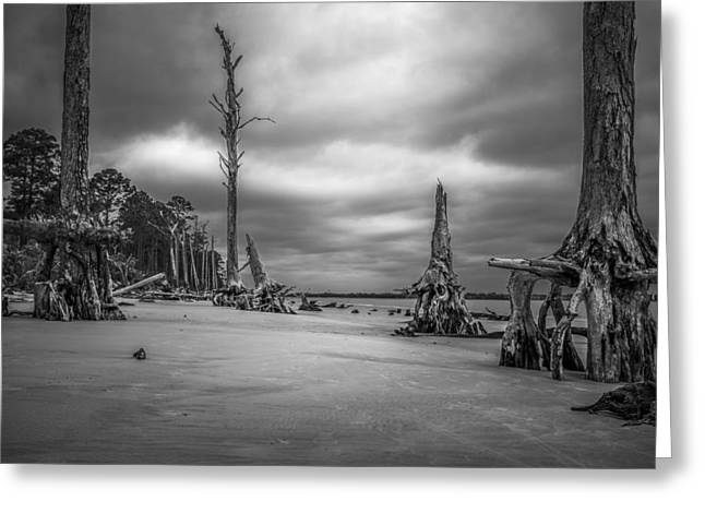 Ghosts Of Giants Above The Sand - Bw Greeting Card by Chris Bordeleau
