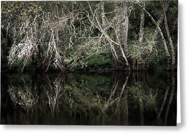 Lonelyness Greeting Cards - Ghostly River Greeting Card by Filomena Francisco