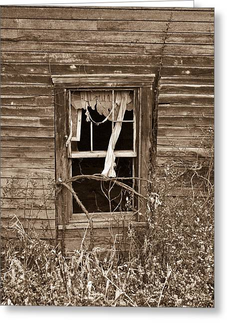 West Fork Greeting Cards - Ghostly Window Greeting Card by Douglas Barnett