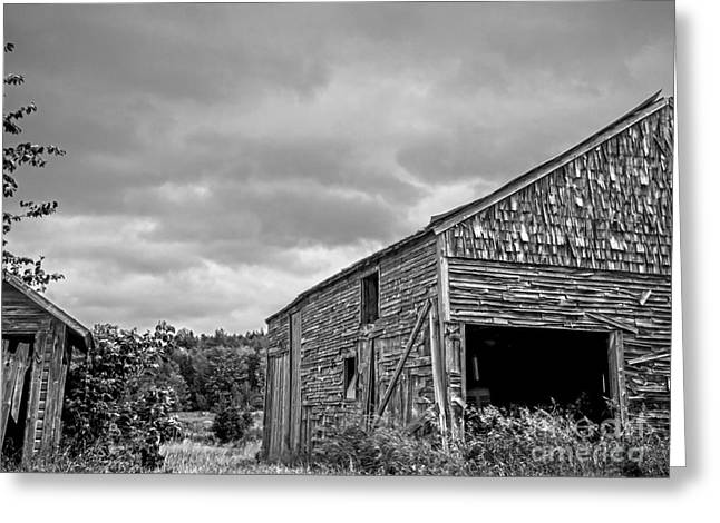 Barn Door Greeting Cards - Ghosts of Farmings Past 1 - BW Greeting Card by James Aiken