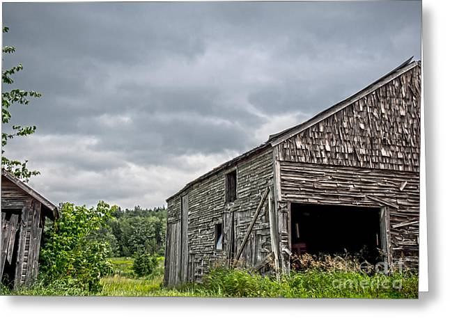 Barn Door Greeting Cards - Ghosts of Farmings Past 1 Greeting Card by James Aiken
