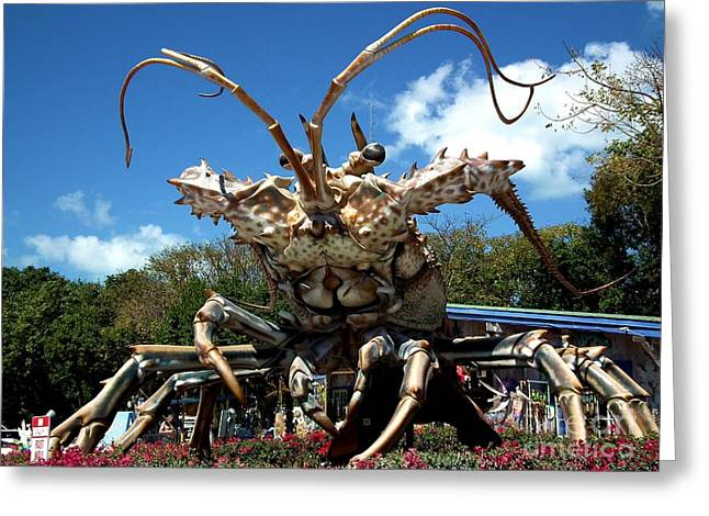 Rain Barrel Photographs Greeting Cards - Giant Lobster Greeting Card by Tammy Chesney